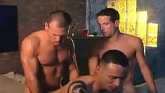Three gorgeous guys with ripped bodies engage in intense sexual action