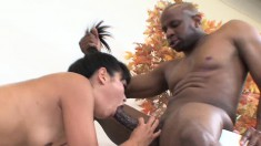 Tight Asian bimbo with a big ass gets jammed full of black dick