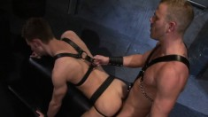 Insatiable Gay Stud Gets Kinky With A Well-endowed Superstud