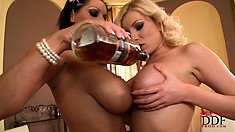 Curvaceous lesbians share a drink in the nude and tease their tits