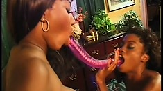 Two lusty ebony lesbians fuck each other with a double-sided dildo
