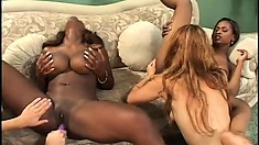 Uninhibited lesbians are desperate to have an interracial fuck fest