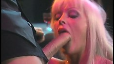 Layla eats dick and gets licked and ass fucked on the counter with an audience