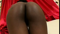 Cocoa Shanelle shows her nice ass before she blows and gets plugged