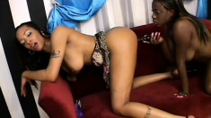 Black lady lovers with nice racks enjoy sharing some big sex toys