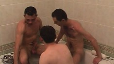 Gay threesome in the neat tub leads to oral and anal fucking