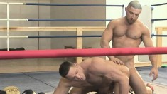 Two sexy boxers show off their hot ripped bodies while fucking