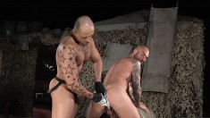 Tattooed Gay Bears Munch On A Woody Before They Fist The Ass