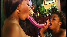 Lustful black bitches give each other a mighty fine cunt licking
