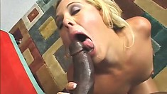 Nasty black hunk works a horny blondes sweet cunt with his monster boner