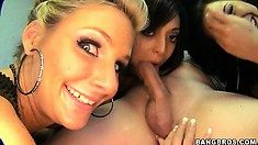 Three horny bimbos have a blast teaming up to suck on a cock